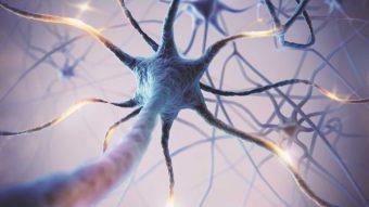 Neurologiska sjukdomar